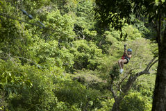 Zip Lining. Young lady ziplining in Costa Rica Stock Photo