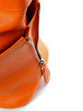 Zip of Women's Ginger Handbag Stock Images