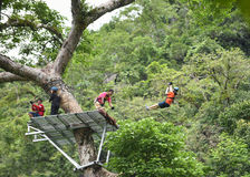 Zipline adventure On tree Royalty Free Stock Photos