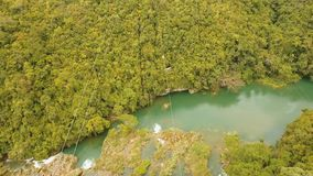 Zipline da atração na selva Bohol, Filipinas filme