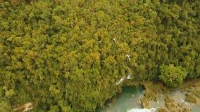 Zipline de la atracción en la selva Bohol, Filipinas almacen de video