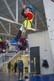 Ziplinie und kletterndes zuhause ausbilden Lizenzfreies Stockbild
