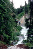 Ziplining, montaña de la marmota Fotos de archivo