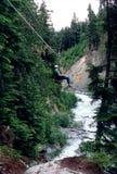Ziplining, montagna di Whistler Fotografie Stock