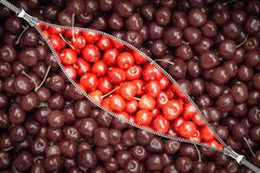 Zipper and cherry berry. View through the zipped fastener on ripe sweet cherry berries royalty free stock image
