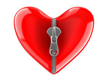 Zipper in heart. Isolated 3D image Royalty Free Stock Photography