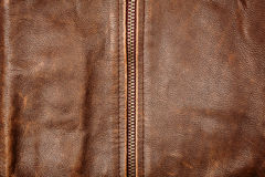 Zipper and leather Stock Image