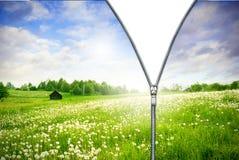 Zipper unzipped green field. Stock Photo