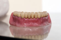 Zirconium Porcelain Tooth plate. In Dentist Store Stock Photo