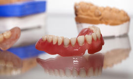 Zirconium Porcelain Tooth plate in Dentist Store Stock Photography
