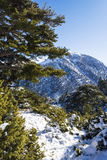 Ziria mountain covered with snow on a winter day, South Peloponnese, Greece Royalty Free Stock Photo