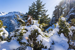 Ziria mountain covered with snow on a winter day, South Peloponnese, Greece Stock Image