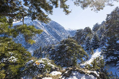 Ziria mountain covered with snow on a winter day, South Peloponnese, Greece Royalty Free Stock Photos