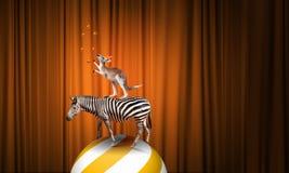 Zirkus in der Stadt Stockbilder