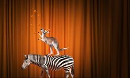 Zirkus in der Stadt Lizenzfreie Stockfotografie