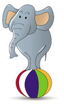 Zirkus-Elefant stock abbildung