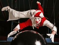 Zirkusluftseiltänzer lizenzfreies stockfoto