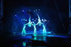 Zirkusshow stockbilder