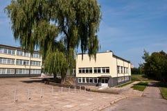 Zirmunai有柳树的拼贴画后院 免版税库存图片