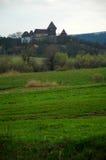 Zitadelle und grüne Felder Lizenzfreie Stockbilder