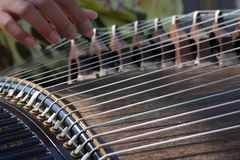 Zither. Performing on a zither string instrument Royalty Free Stock Photography