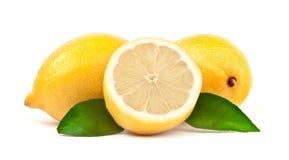Zitrone lizenzfreie stockfotografie