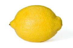 Zitrone Stockbild