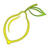 Zitrone stock abbildung