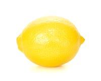 Zitrone Stockfotografie