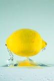 Zitrone 1 Lizenzfreie Stockfotos
