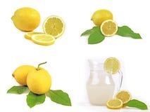 Zitrone Lizenzfreie Stockbilder