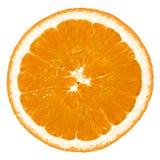 Zitrone lizenzfreies stockfoto