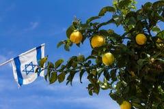 Zitrone auf einem Baum und einer israelischen Flagge, gegen den blauen Himmel Stockbild