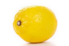 Zitrone auf Weiß Lizenzfreies Stockbild