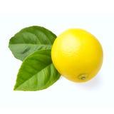 Zitrone auf Weiß Stockbild