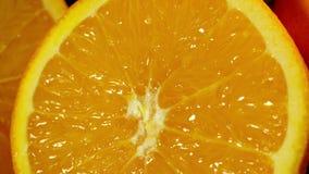Zitrone beinahe eingeschnitten Kamera schiebt von der Unterseite hoch stock video