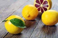Zitrone, das beste natürliche Vitamin Stockfotografie