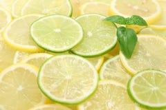 Zitrone, die ein Kalk schneidet Stockbild