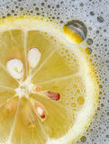 Zitrone Fiz Lizenzfreie Stockbilder