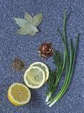 Zitrone, Frühlingszwiebel, Dill, Lorbeerblatt, Gewürze auf dem Tisch lizenzfreie stockfotos