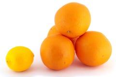 Zitrone gegen Orangen Lizenzfreies Stockbild