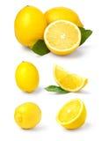 Zitrone getrennt auf Weiß Lizenzfreie Stockfotos