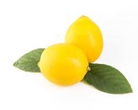 Zitrone getrennt auf weißem Hintergrund Mit Beschneidungspfad Stockfoto