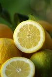 Zitrone halb Lizenzfreie Stockfotos