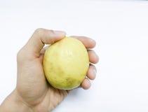 Zitrone an Hand Lizenzfreies Stockbild