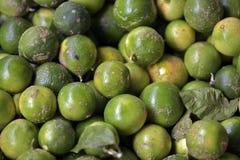 Zitrone herausgestellt im Freiluftmarktstall in Brasilien Lizenzfreie Stockfotografie