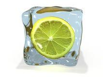 Zitrone im Eis Lizenzfreie Stockbilder