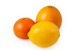 Zitrone, Mandarine und Orange Lizenzfreie Stockfotografie