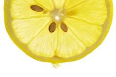 Zitrone mit Safttropfen Stockbild