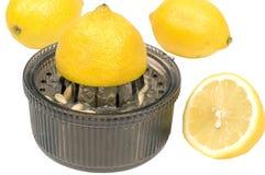 Zitrone-Quetscher Stockbild
